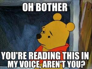 oh-bother-you-are-reading-this-in-my-voice-are-not-you-wtf-meme-picture